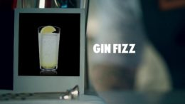 GIN FIZZ DRINK RECIPE – HOW TO MIX